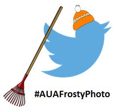Frosty Photo