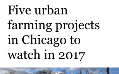 AUA Named One of Five Urban Farming Projects to Watch in 2017: Last Chance to Help Us Reach Our Year-End Fundraising Goal!