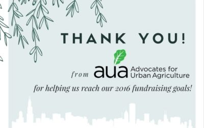 Thank You for Helping AUA Reach our Year-End Fundraising Goal!