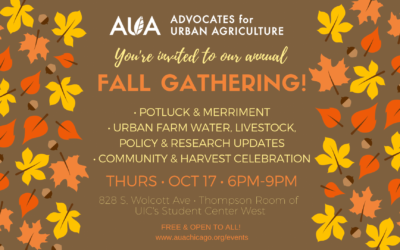 Autumn News: AUA Launches Farmer-to-Farmer Mentorship, Annual Fall Gathering, Proposed City Livestock Policy Update, & More!
