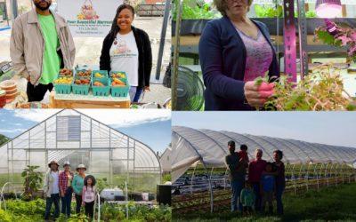 COVID-19 Farmer Support Grant — Round 2