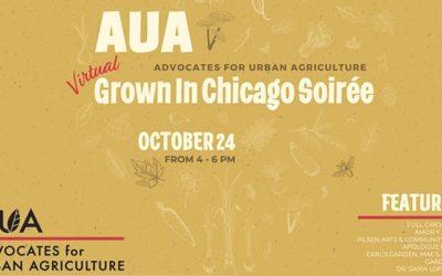 AUA's 6th Annual (Virtual) Grown In Chicago Soiree