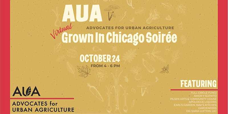 AUA's 6th Annual (Virtual) Grown In Chicago Soiree